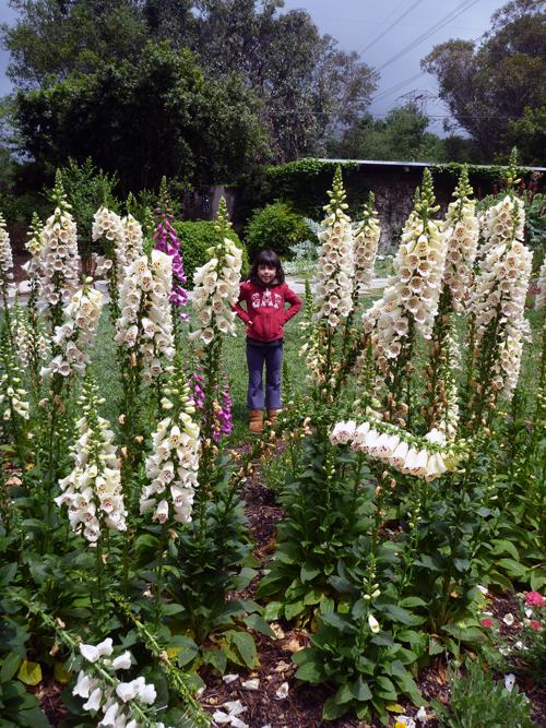 Natalie en floras