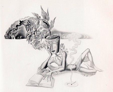 Plant_head